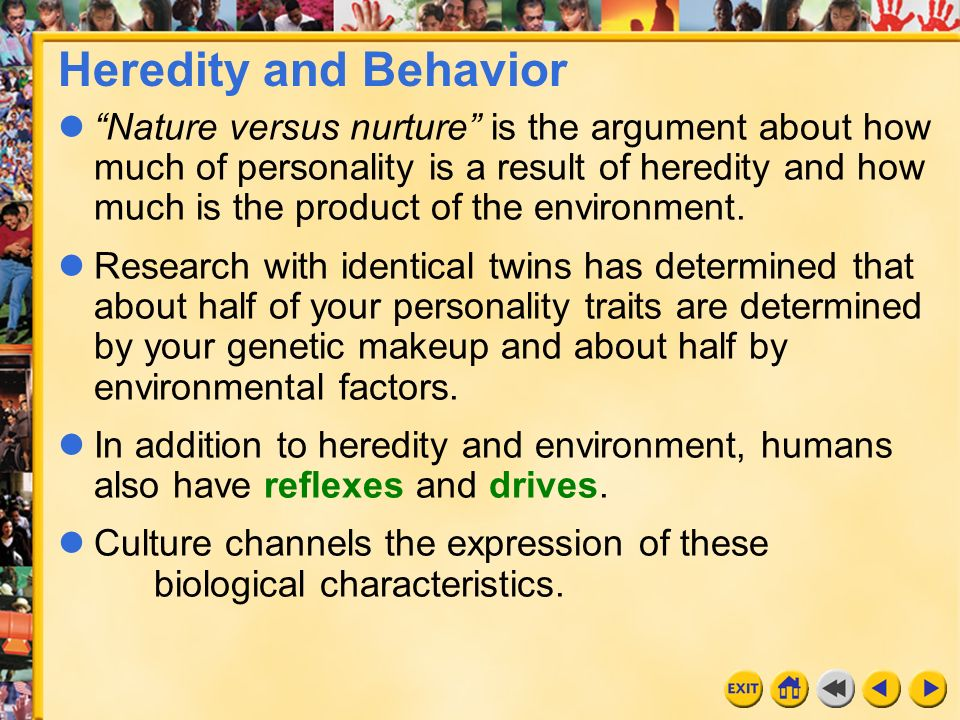 heredity determines personality essay Essay on influence of environment on personality and physiological characteristics are more affected by heredity environment alone cannot determine an individual.