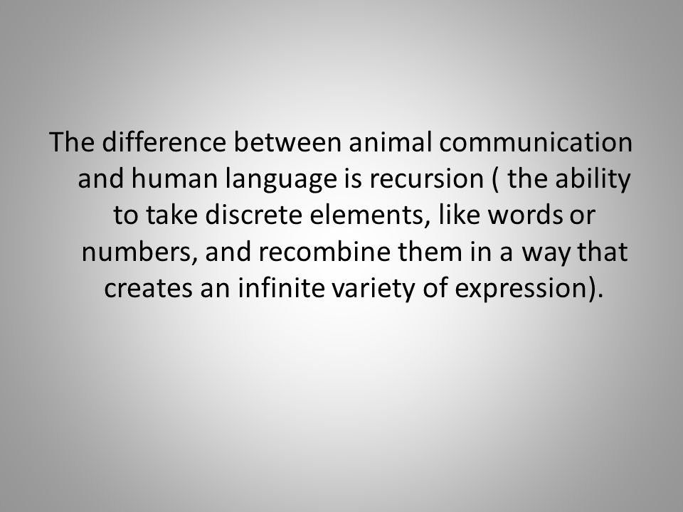 Human And Animal Communication English Language Essay Homework  Human And Animal Communication English Language Essay