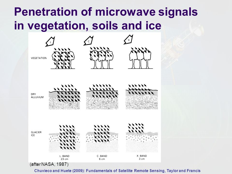 Microwave penetration in soils