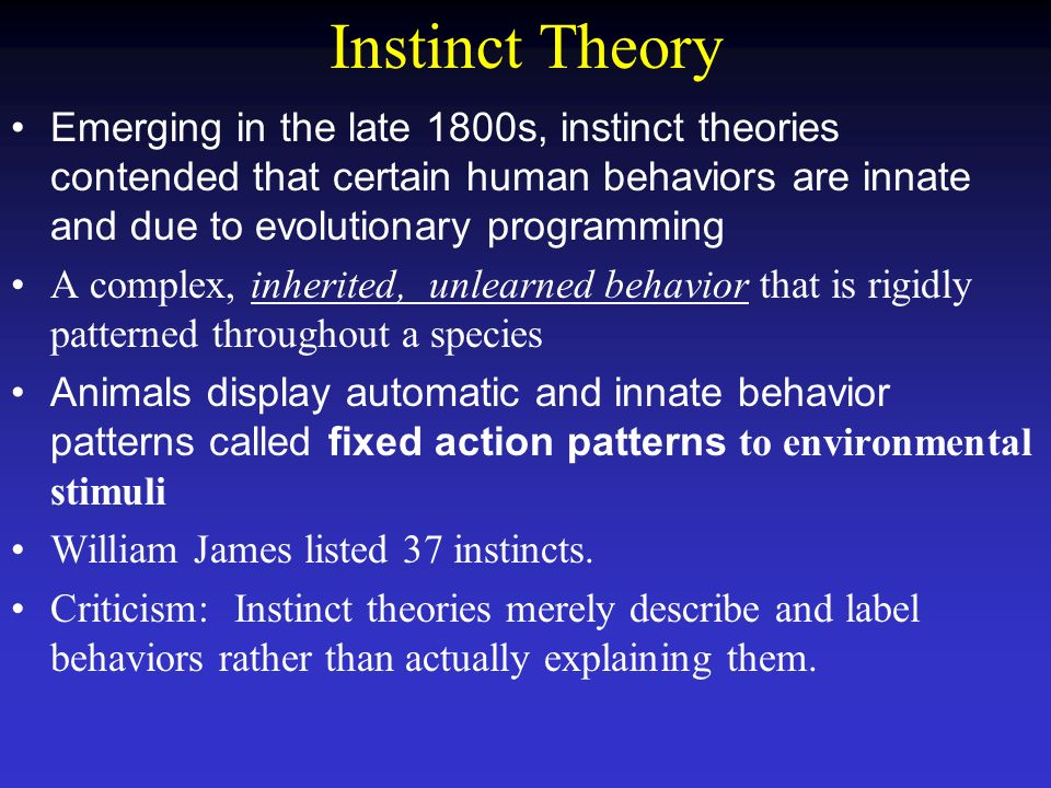 What is instinct theory?