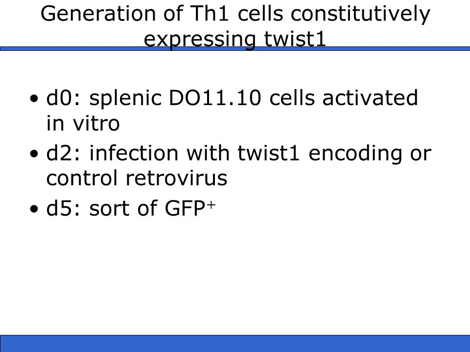 Generation of Th1 cells constitutively expressing twist1
