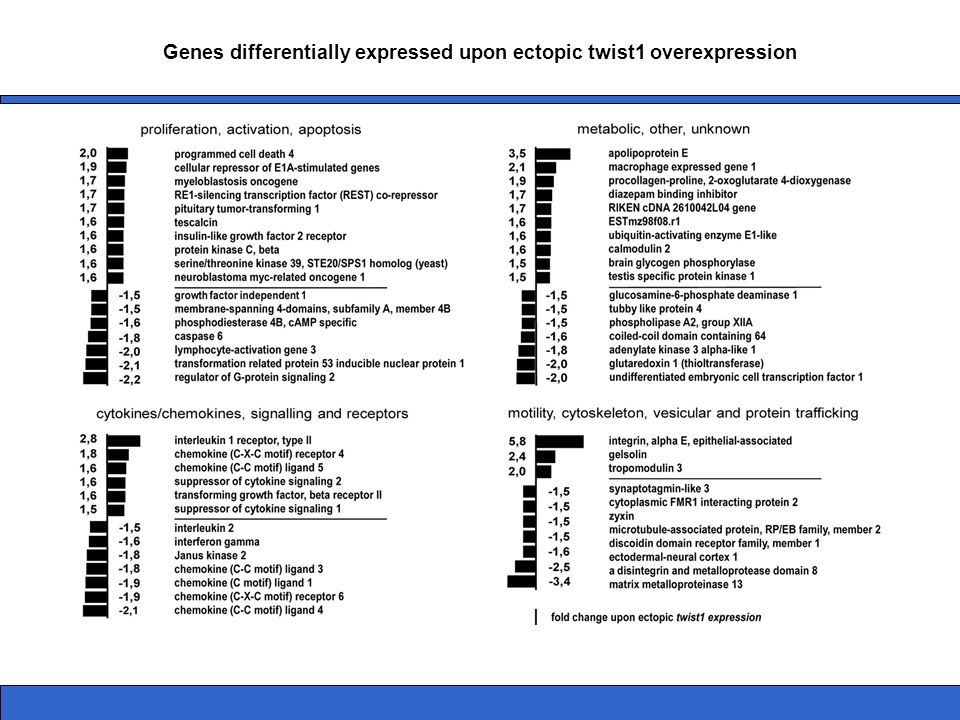 Genes differentially expressed upon ectopic twist1 overexpression