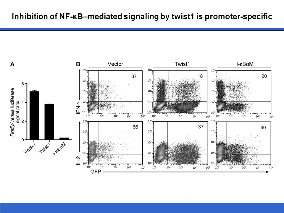 Inhibition of NF-κB–mediated signaling by twist1 is promoter-specific