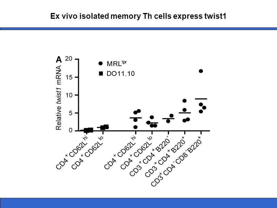 Ex vivo isolated memory Th cells express twist1