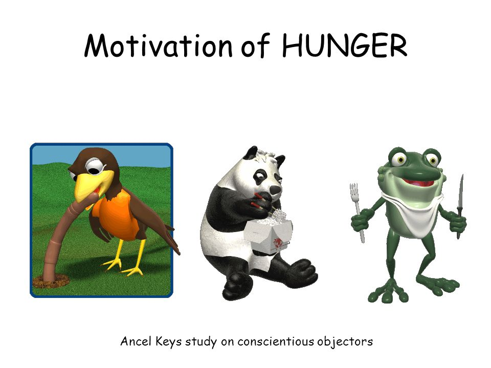 a study of hunger People overeat because their hunger directs them to consume more calories than they require the purpose of this study was to analyze the changes in experience and perception of hunger before and after participants shifted from their previous usual diet to a high nutrient density diet this was a.