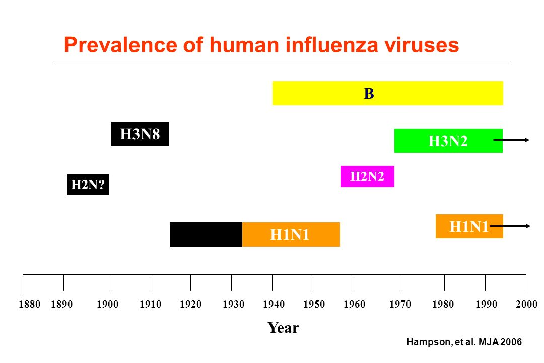 epidemiology of the influenza virus The avian influenza a h7n9 virus has caused infections in human beings in china since 2013 a large epidemic in 2016-17 prompted concerns that the epidemiology of the virus might have changed, increasing the threat.