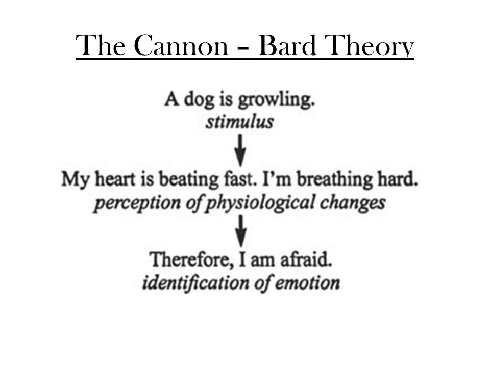 The Cannon – Bard Theory