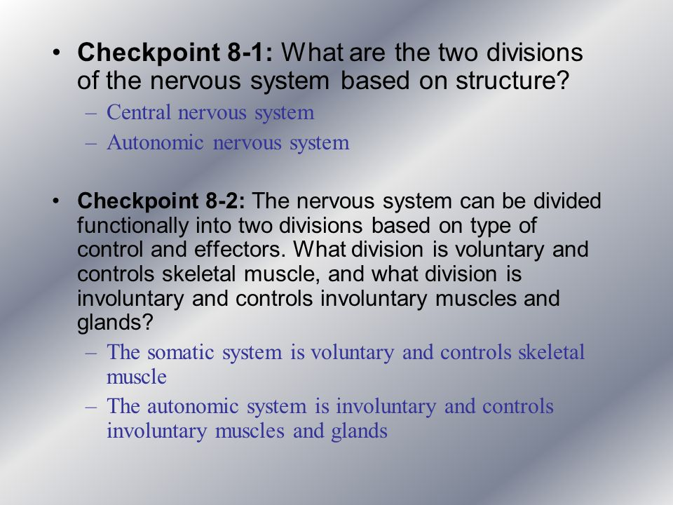 Checkpoint 8-1: What are the two divisions of the nervous system based on structure