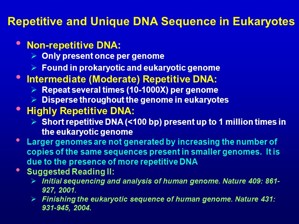 Repetitive and Unique DNA Sequence in Eukaryotes