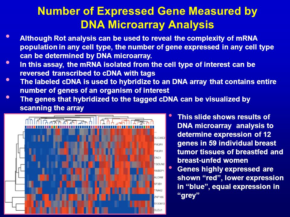 Number of Expressed Gene Measured by DNA Microarray Analysis