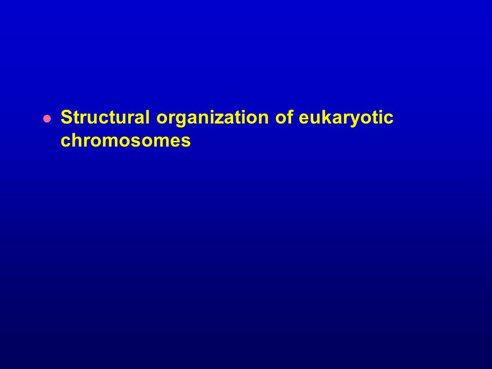 Structural organization of eukaryotic chromosomes