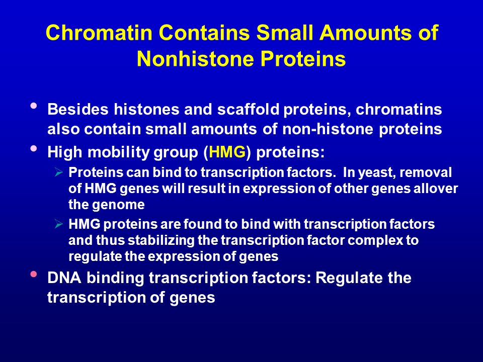 Chromatin Contains Small Amounts of Nonhistone Proteins