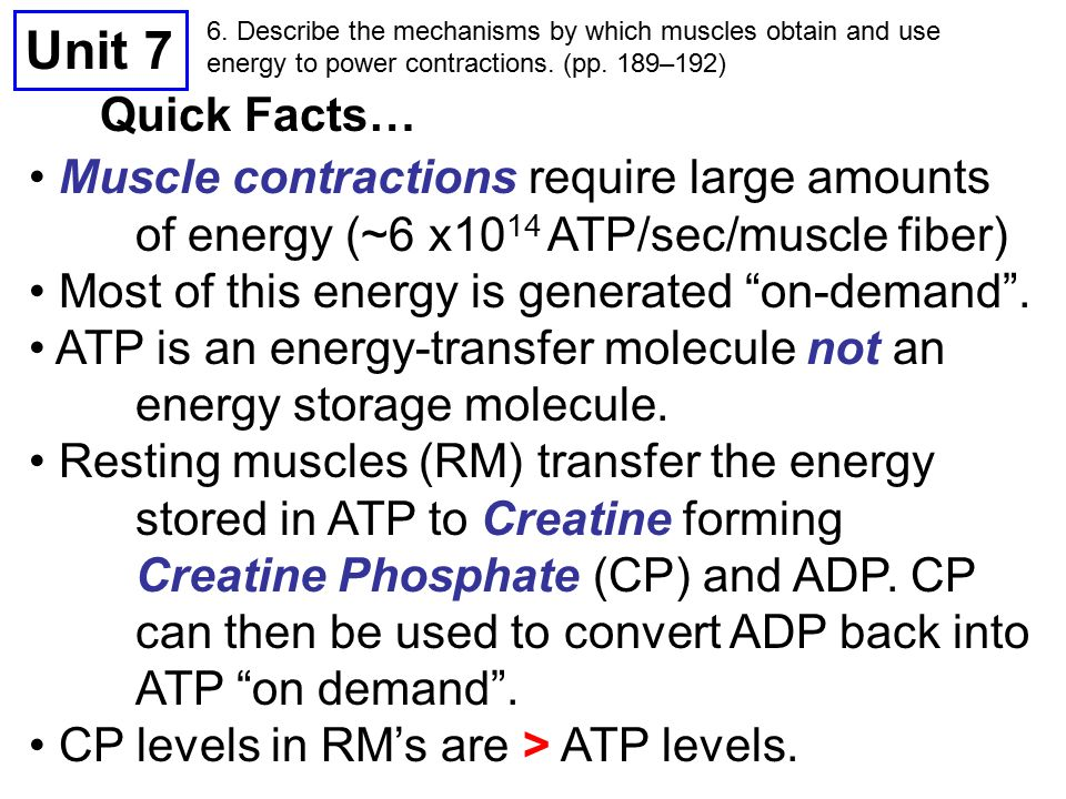 unit 7 objectives 1. describe the properties and functions of, Muscles