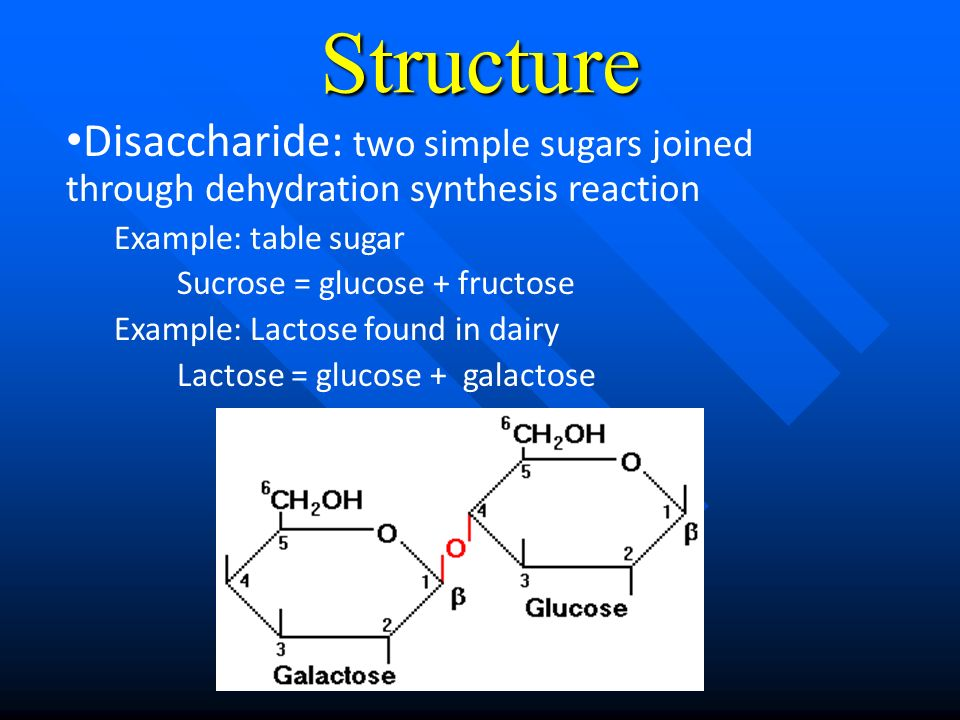 Dehydration Reaction Example Organic molecules Mole...