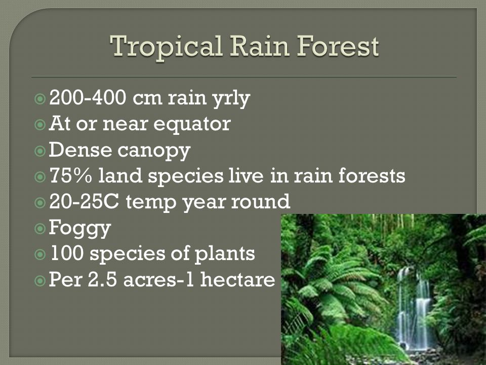 Tropical Rain Forest cm rain yrly At or near equator