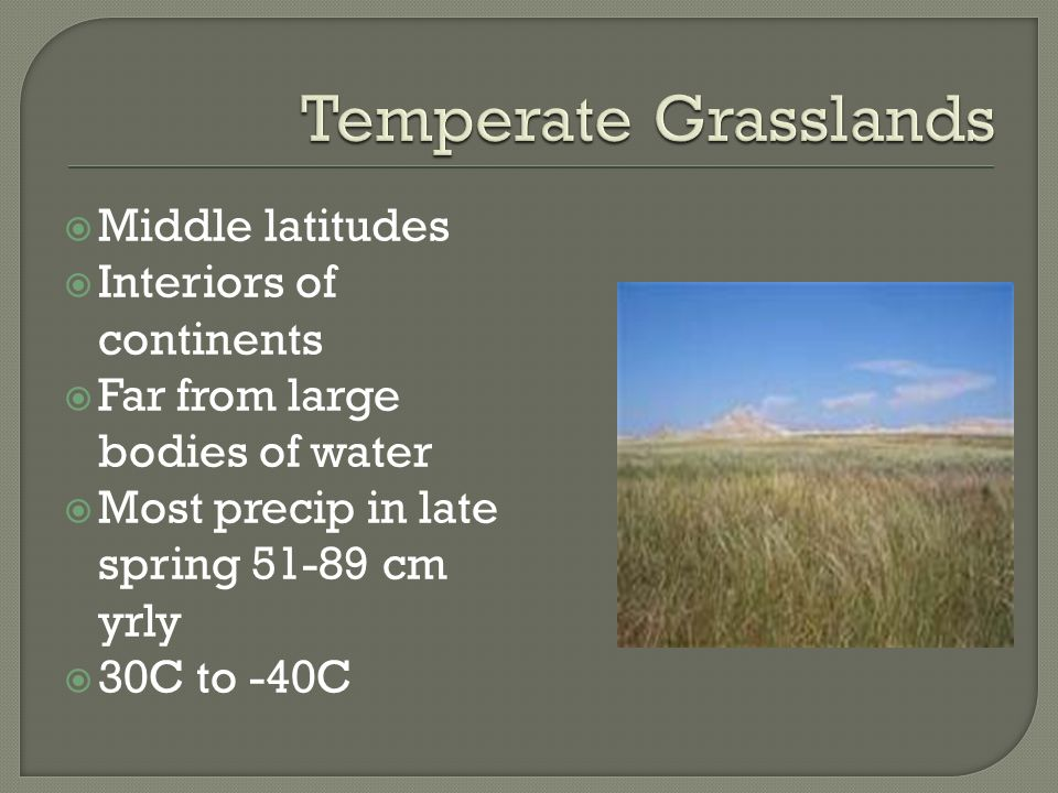 Temperate Grasslands Middle latitudes Interiors of continents