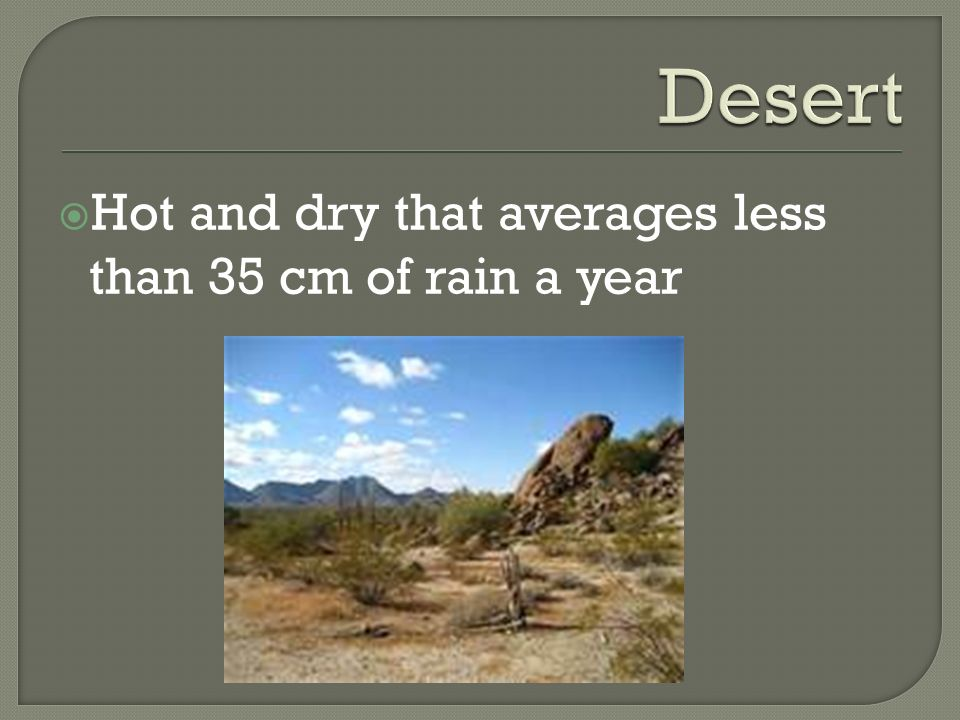 Desert Hot and dry that averages less than 35 cm of rain a year