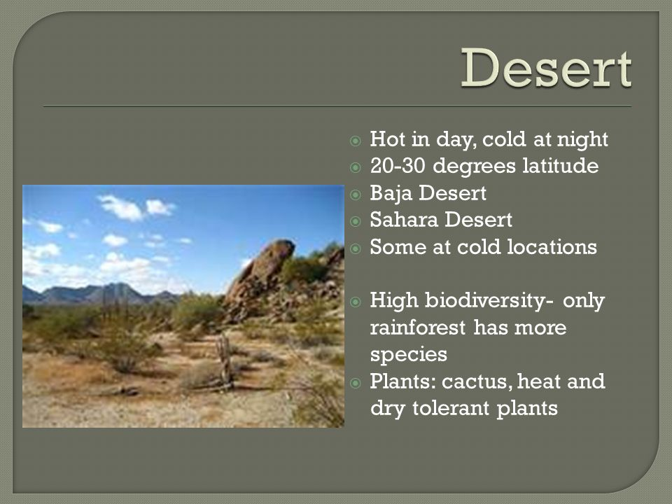 Desert Hot in day, cold at night degrees latitude Baja Desert