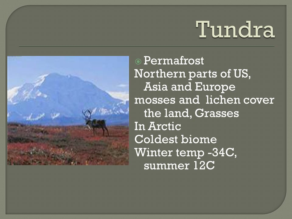 Tundra Permafrost Northern parts of US, Asia and Europe