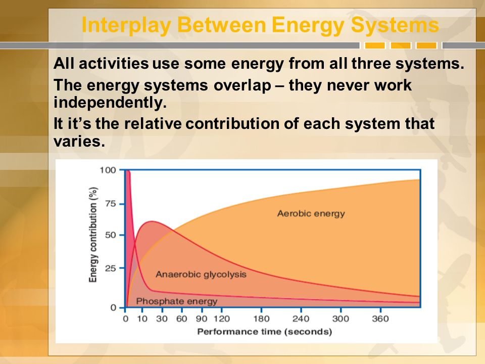 energy systems netball Poll question about which components of fitness are the most important for success in netball.