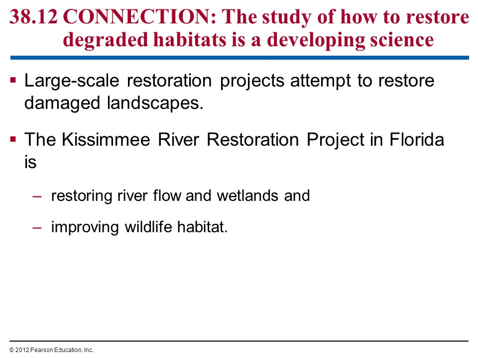 many misconceptions about wetlands One of the misconceptions about this biome as well as conservation in general is that the coastal wetlands are an eternal supply of resources this is not true the coastal wetlands are becoming increasingly vulnerable as humans exploit the land through pollution, fishing, and other such acts.