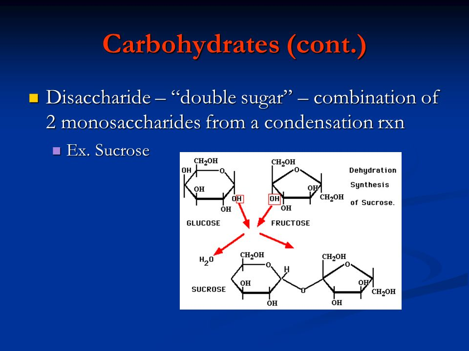 Carbohydrates (cont.) Disaccharide – double sugar – combination of 2 monosaccharides from a condensation rxn.