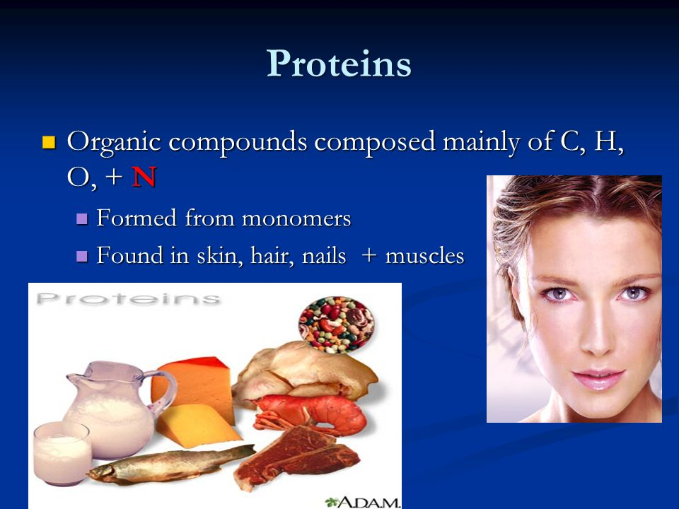 Proteins Organic compounds composed mainly of C, H, O, + N