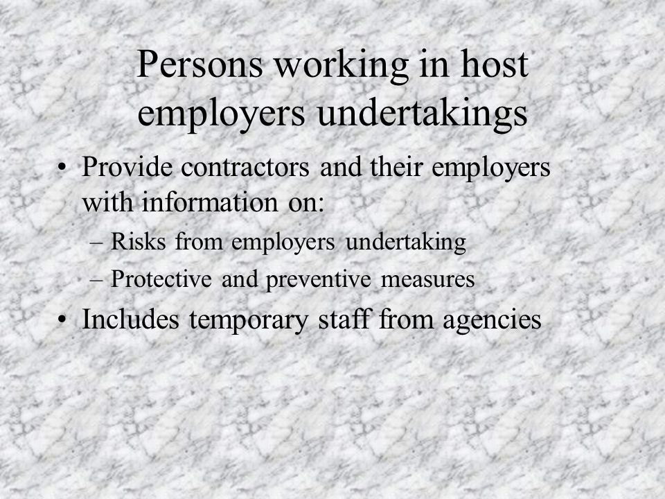 Persons working in host employers undertakings