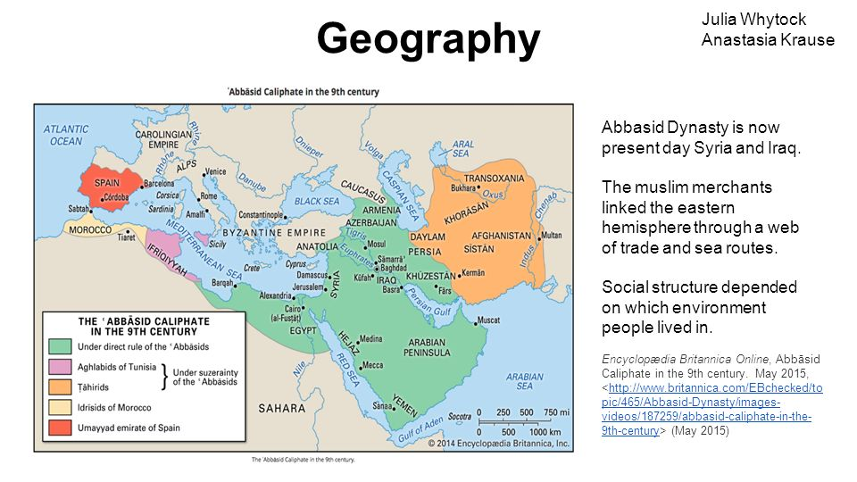 the establishment of abbasid dynasty history essay Umayyad vs abbasid dynasties in the rise and during the early years of the dynasty the abbasid rulers encouraged haven't found the essay you.