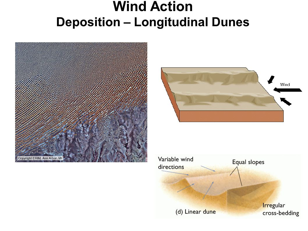 Deserts and Wind Action - ppt video online download