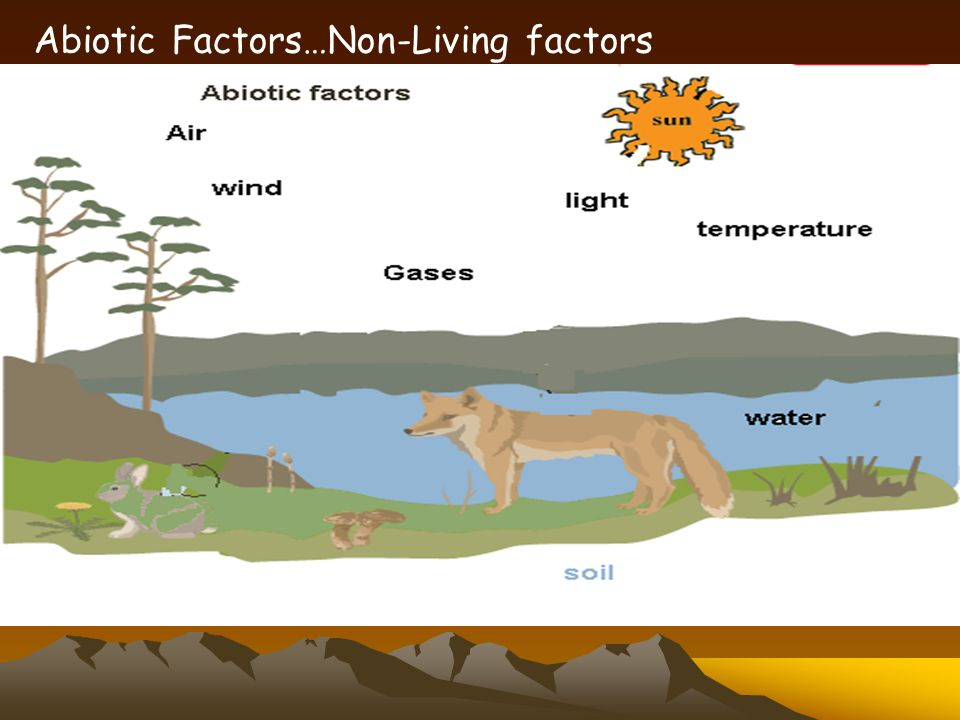 Non living factors of water pollution