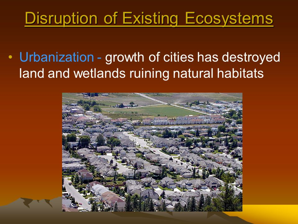 Ecosystem Disruption on the Environment