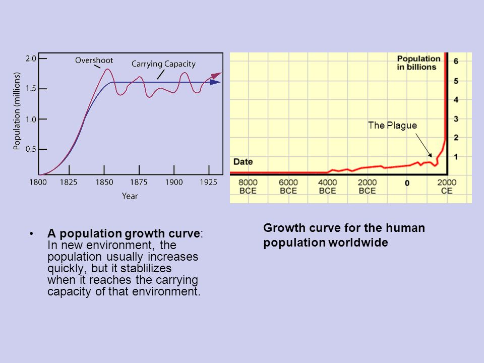 an analysis of the increase in human population worldwide Long-term global population growth is a meta-analysis of 70 quantitative studies graph of the global human population from.