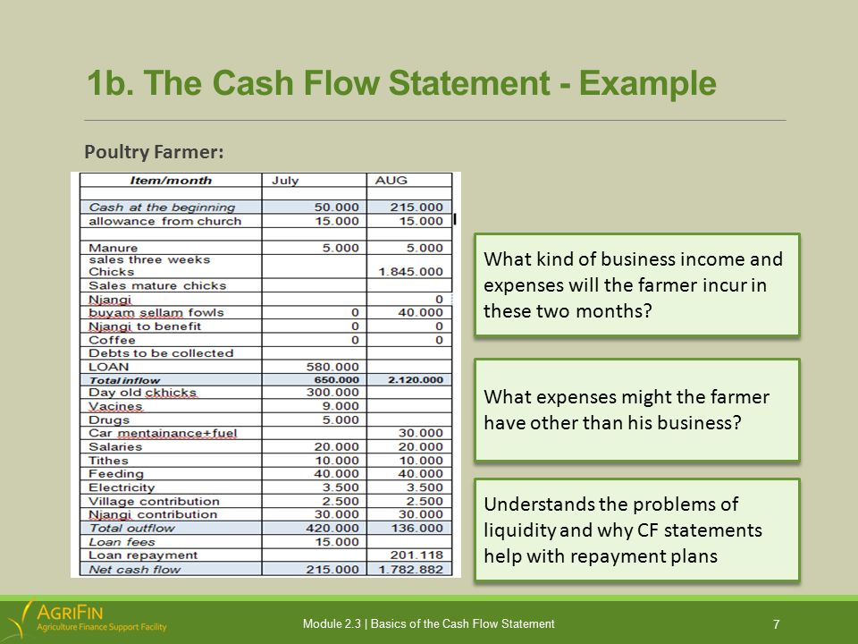 Sample Cash Flow Statement