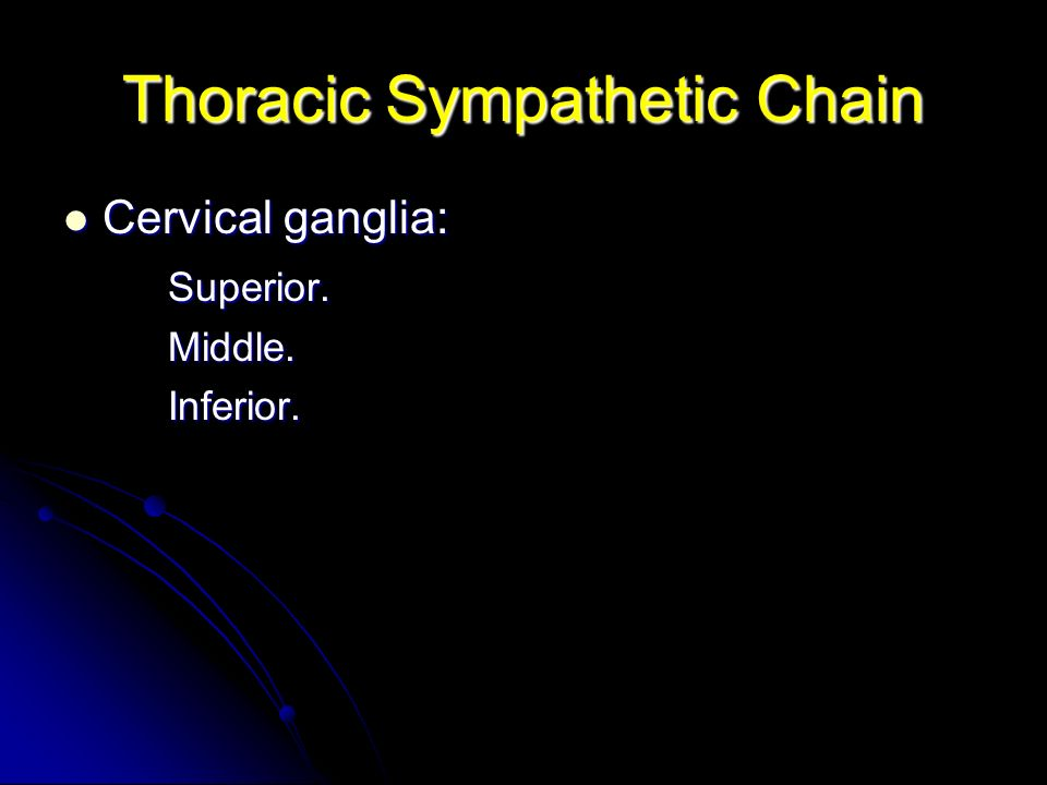 Thoracic Sympathetic Chain