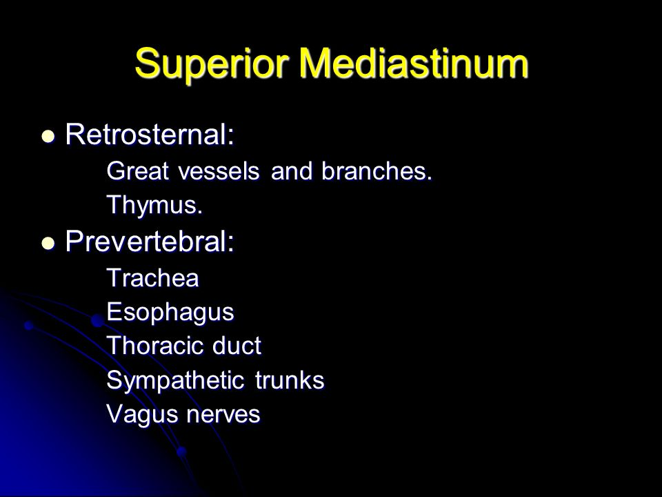 Superior Mediastinum Retrosternal: Prevertebral: