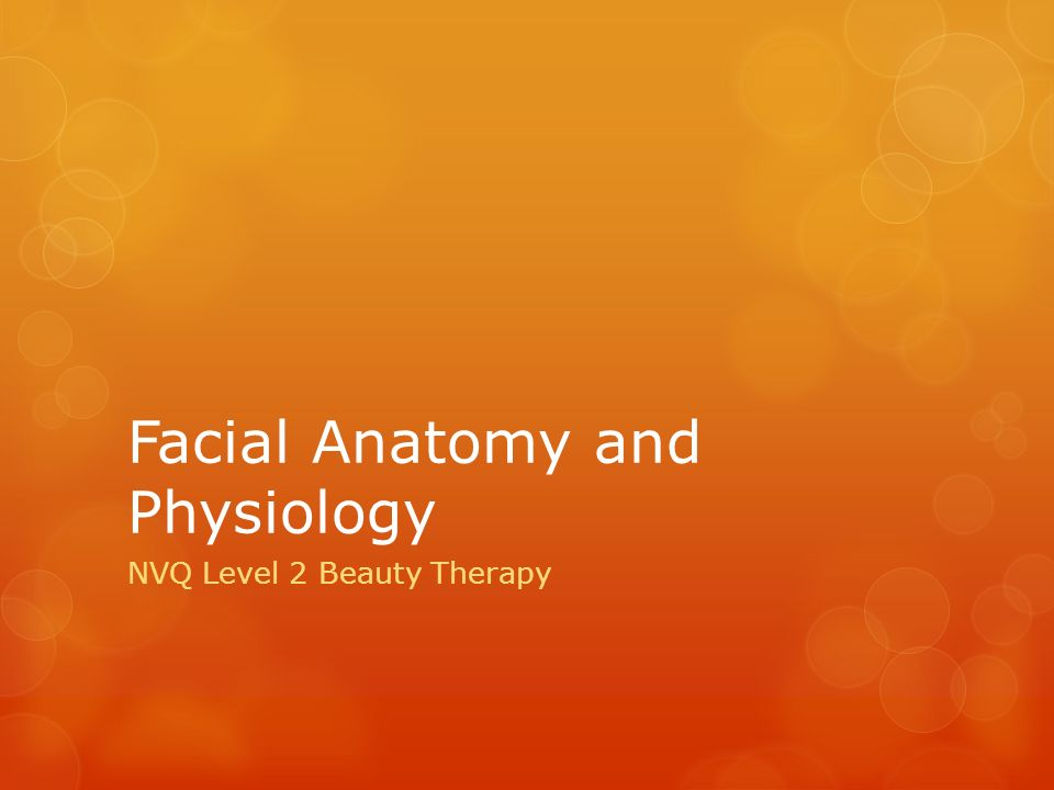 Facial Anatomy and Physiology - ppt video online download