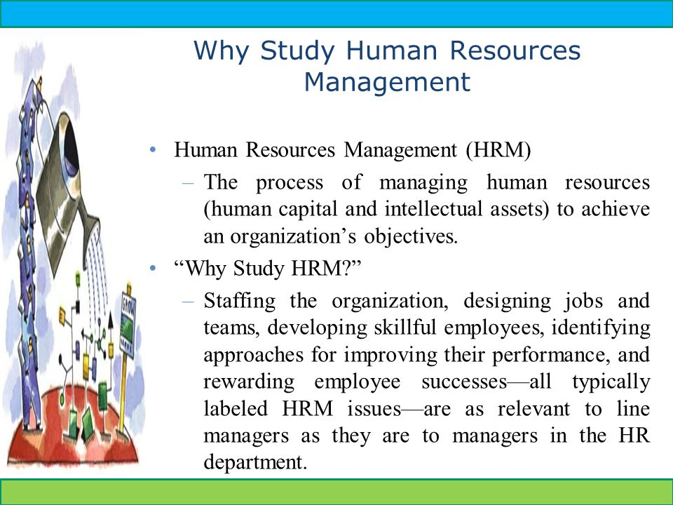 Human Resources Development  Ppt Video Online Download. Enterprise Business Solutions Reviews. Credit Card Lowest Rates Hd Website Templates. Best Place To Sell Used Jewelry. Top Online Certificate Programs. Light To Frequency Converter Tsl235r. Oregon State Graduate Programs. Event Planner Website Templates. Royalty Free Stock Photos Free Download