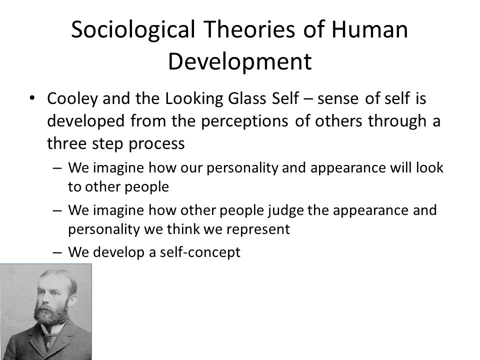 sociological theories and community development To introduce the historical context of sociological theory theorizing about social life and human community has sought of constitutes a critical development especially in the later development of sociology.