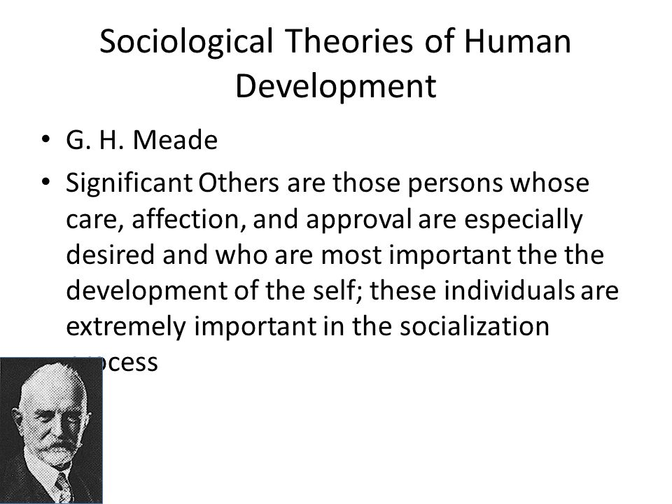 "socialisation is a fundamental sociological concept sociology essay Introduction to sociology or the sociology of social forms in his essay ""the problem of sociology contemporary social and sociological theory:."
