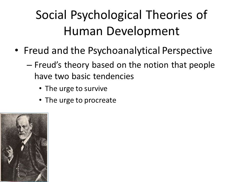 different theories on human development Throughout their lives, humans go through various stages of development  developmental psychologists study how people grow, develop and adapt at  different.