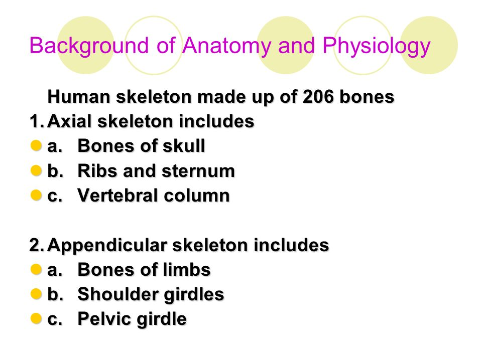 Background of Anatomy and Physiology - ppt download