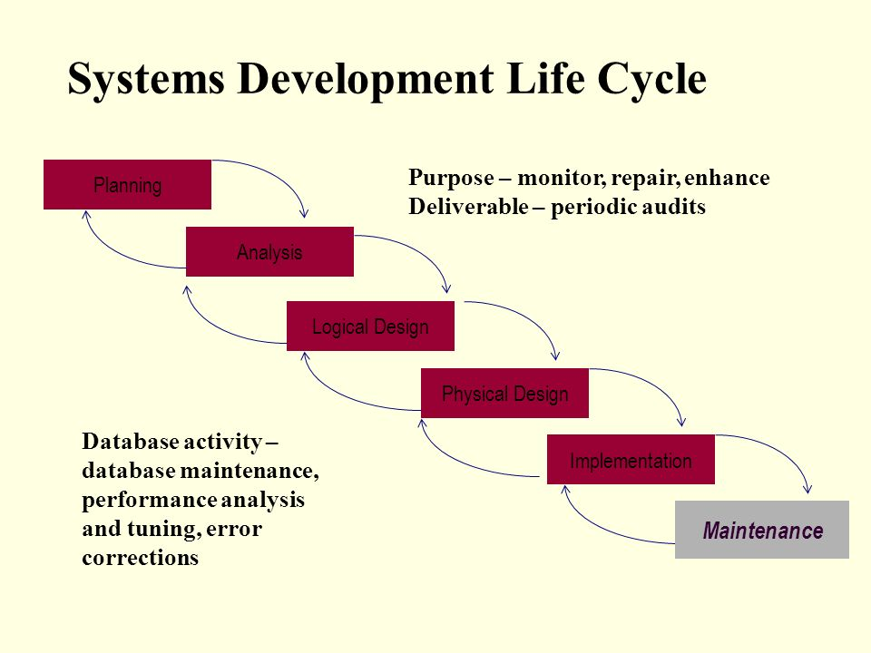 The Database Development Process Ppt Video Online Download