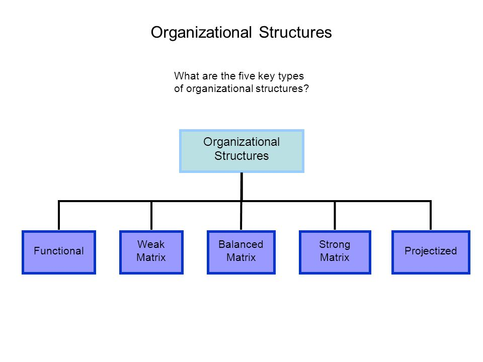 the five organizational structures are functional essay Essay-the functional structure is found in many organizations and it  no knowledge and concern outside their functional  organizational change april 2, 2018.