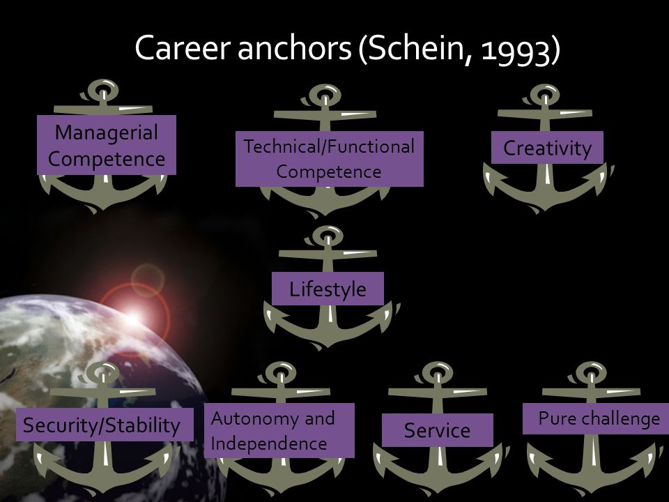 Career anchors (Schein, 1993)