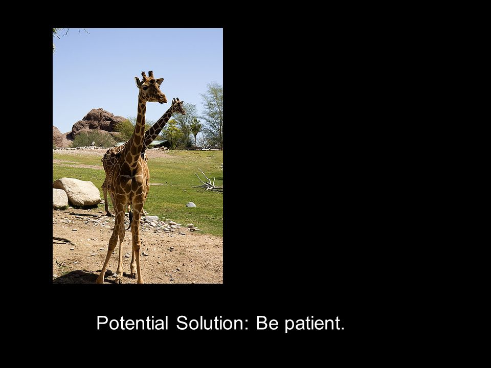 Potential Solution: Be patient.