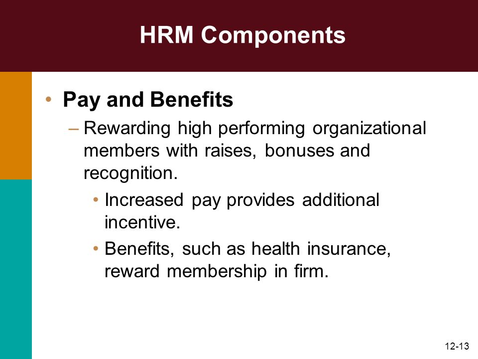 HRM Components Pay and Benefits