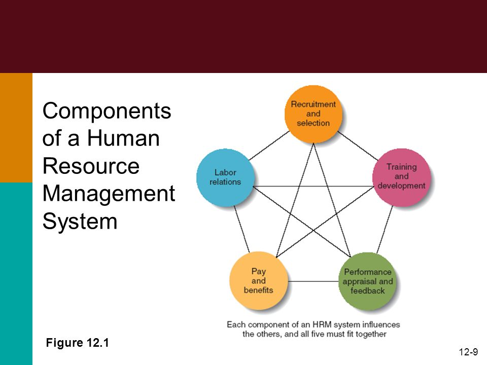 Components of a Human Resource Management System