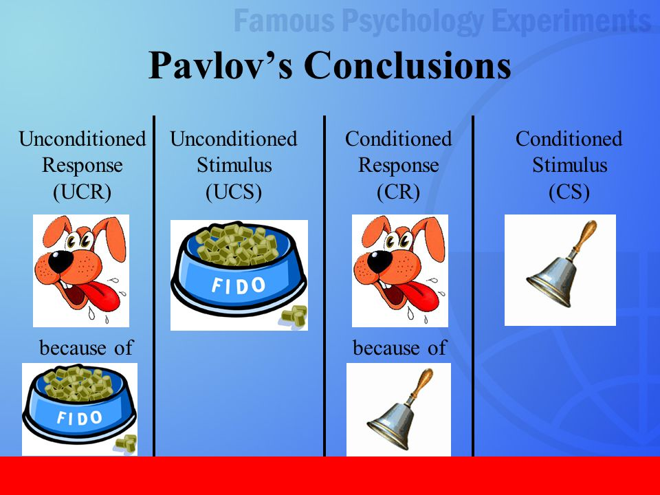 In Pavlov S Experiments With Dogs The Conditioned Response Was The