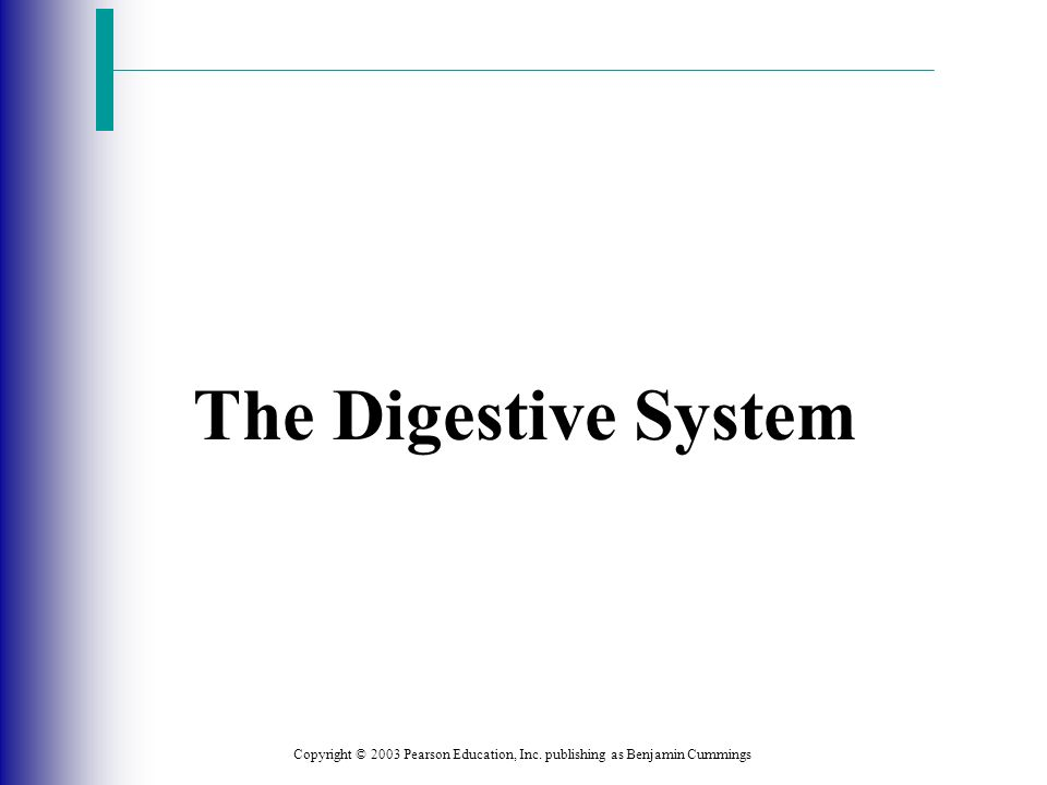 The Digestive System Copyright © 2003 Pearson Education, Inc. publishing as Benjamin Cummings